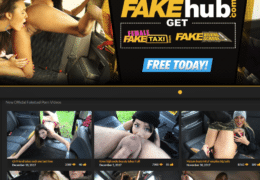 Screenshot de Fake Taxi